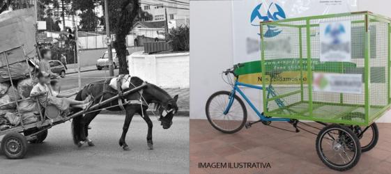 Dudu Moraes votou a favor da redução gradativa de veículos de tração animal