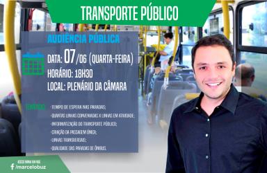 Marcelo Buz - Audiência Pública sobre Transporte Público - 07/06/17