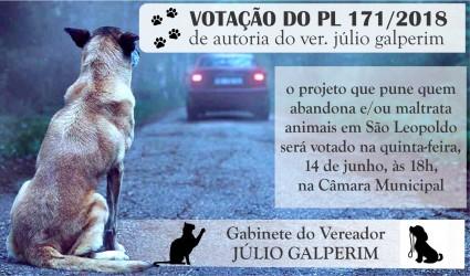 Abandono ou maus-tratos de animais poderá gerar multa de até R$ 3 mil em São Leopoldo