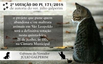 Projeto que estabelece multas de até R$ 3 mil por abandono e/ou maus-tratos de animais volta à pauta nesta semana