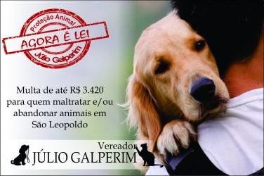 Sancionada lei que multa em até R$ 3.420 quem maltratar ou abandonar animais em São Leopoldo