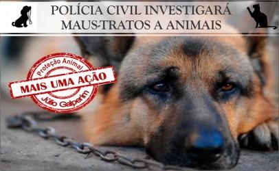Agentes da Polícia Civil investigarão casos de maus-tratos a animais em São Leopoldo