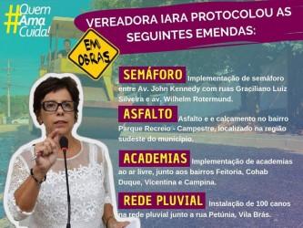 Vereadora Iara Cardoso protocola emendas no orçamento de 2019