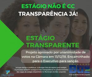 Aprovado projeto de Estágio Transparente do Vereador Marcelo Buz
