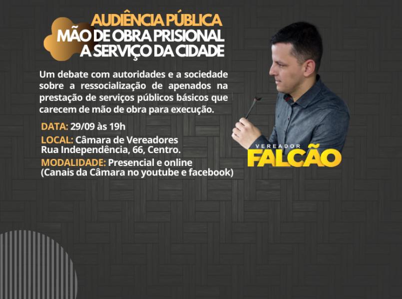 Vereador Falcão comanda audiência pública sobre trabalho prisional nesta quarta