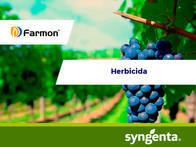 Herbicida Farmon®