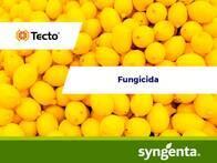Fungicida Tecto 500 SC
