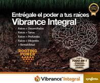 Pack Vibrance® Integral
