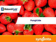 Fungicida Ridomil Gold® MZ 68 WG