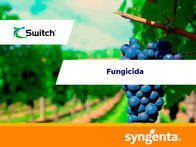 Fungicida Switch®  62.5 WG
