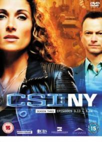 CSI: NY - 3ª Temporada