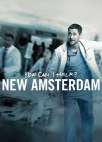 New Amsterdam - 1ª Temporada