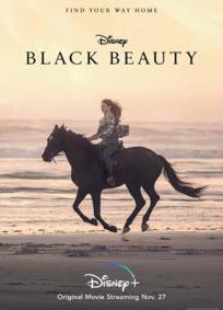 Beleza Negra: Uma Amizade Verdadeira