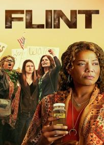 As Mulheres De Flint