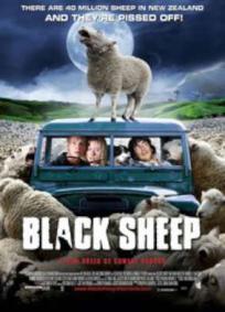 Ovelha Negra   Ovelhas Assassinas
