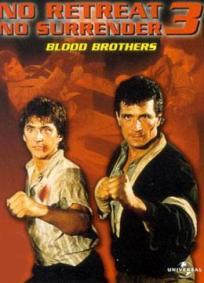 Os Irmãos Kickboxers