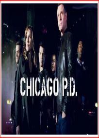 Chicago PD - 2ª temporada