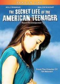 The Secret Life of the American Teenager - 1a Temporada