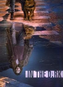 In the Dark - 2ª Temporada