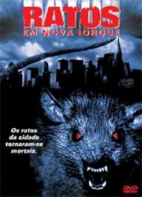 Ratos em Nova Iorque