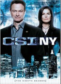CSI: NY - 8ª Temporada