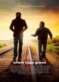 Onde Nasce a Esperança