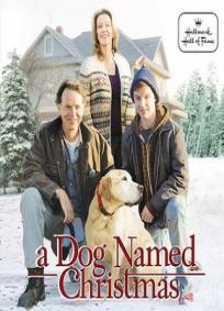 Um Cachorro Chamado Natal