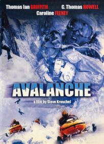 Avalanche - Inferno no Alasca