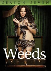 Weeds - 7ª Temporada