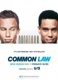Common Law -1ª Temporada