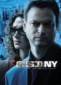 CSI: NY - 5ª Temporada