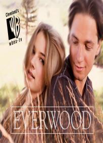 Everwood - 3ª Temporada