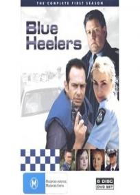 Blue Heelers - 1ª Temporada