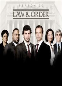 Lei e Ordem - 20ª Temporada