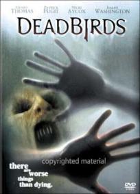 A Casa dos Pássaros Mortos