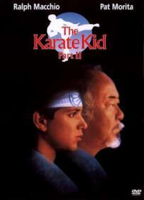 Karatê Kid 2 - A Hora da Verdade Continua