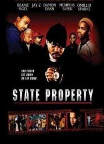 Propriedade do Estado