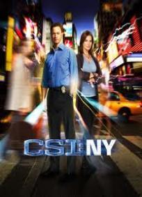 CSI: NY - 4ª Temporada