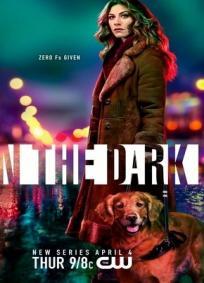 In the Dark - 1ª Temporada