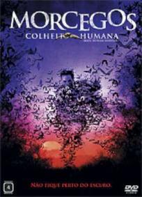 Morcegos - Colheita Humana
