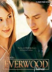 Everwood - 1ª Temporada