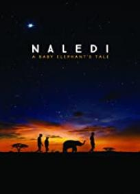 Naledi: A Baby Elephant