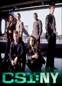 CSI NY - 1ª Temporada