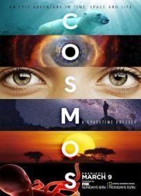 Cosmos: Uma Odisséia do Espaço-Tempo
