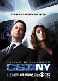CSI: NY - 2ª Temporada