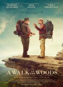 Uma Caminhada na Floresta Ou Por aqui e por ali