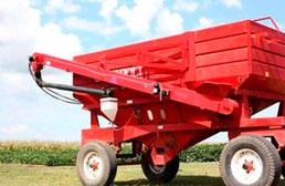 Chimangos en Agrofy