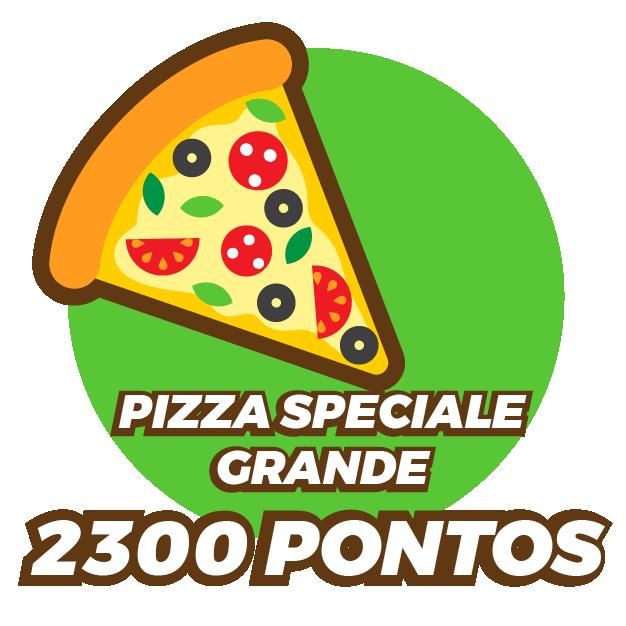 Pizza Speciale Grande