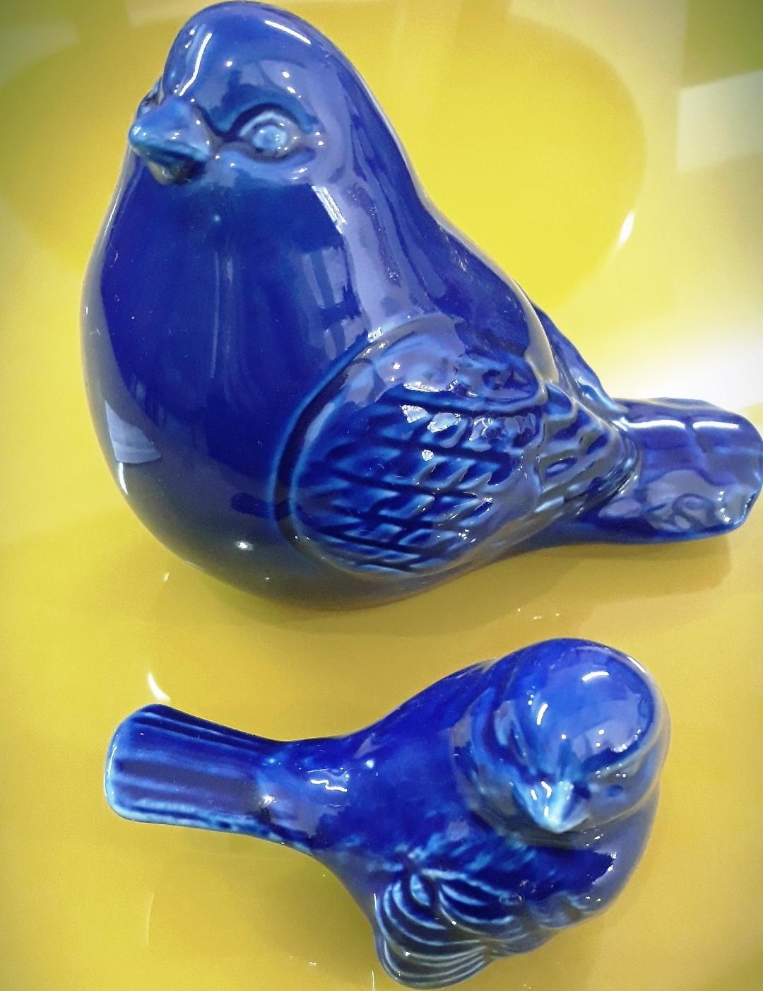 Conjunto de  Pássaros Calda  Azul P/ G