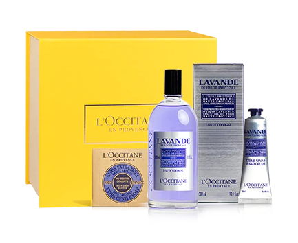 Presente Especial Lavanda Completa - L'occitane